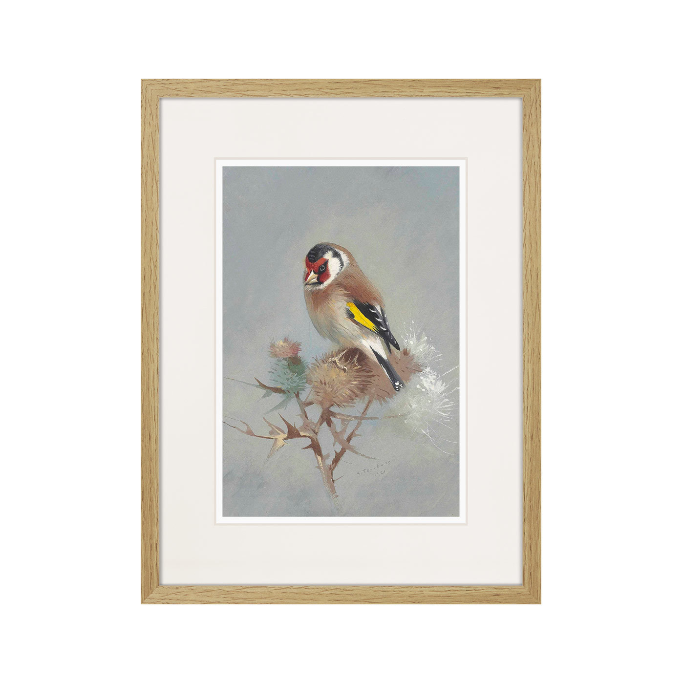 Goldfinch on a thistle, 1886г.