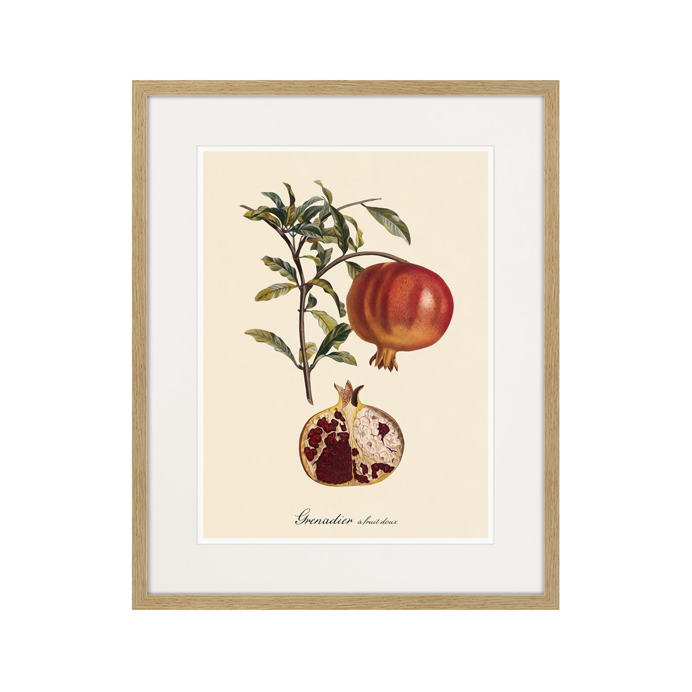 Juicy fruit lithography №7, 1870г.