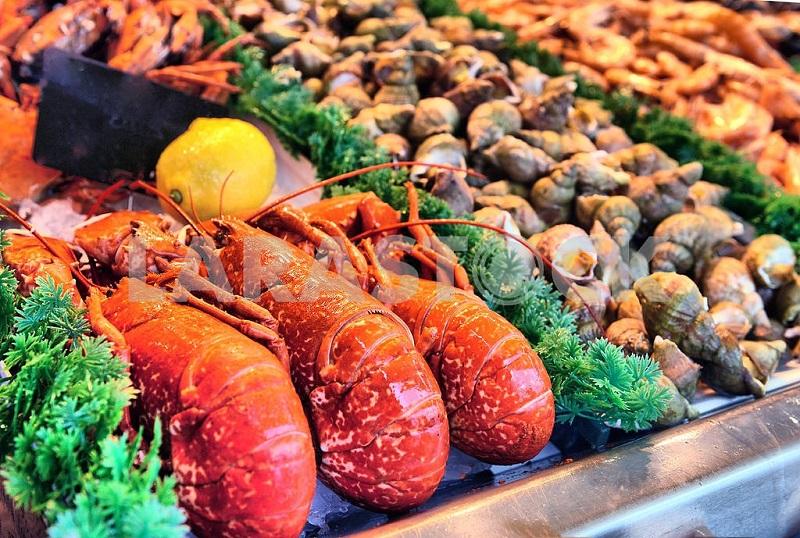 Витрина из морепродуктов