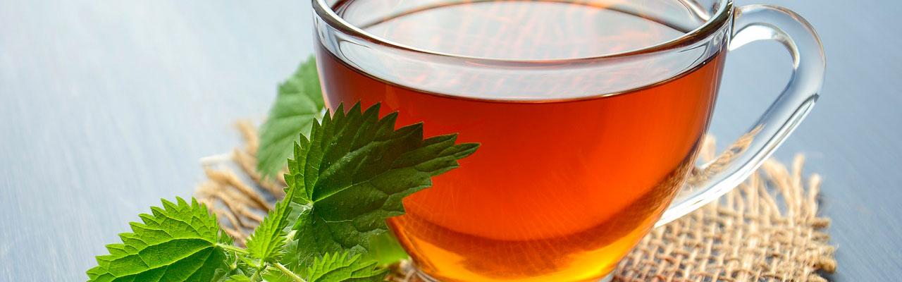 Полезные травы для вкусного чая