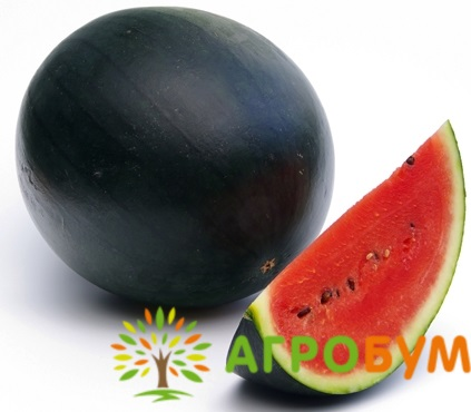 Купить семена Арбуз Шуга Бейби  1 г по низкой цене, доставка почтой наложенным платежом по России, курьером по Москве - интернет-магазин АгроБум
