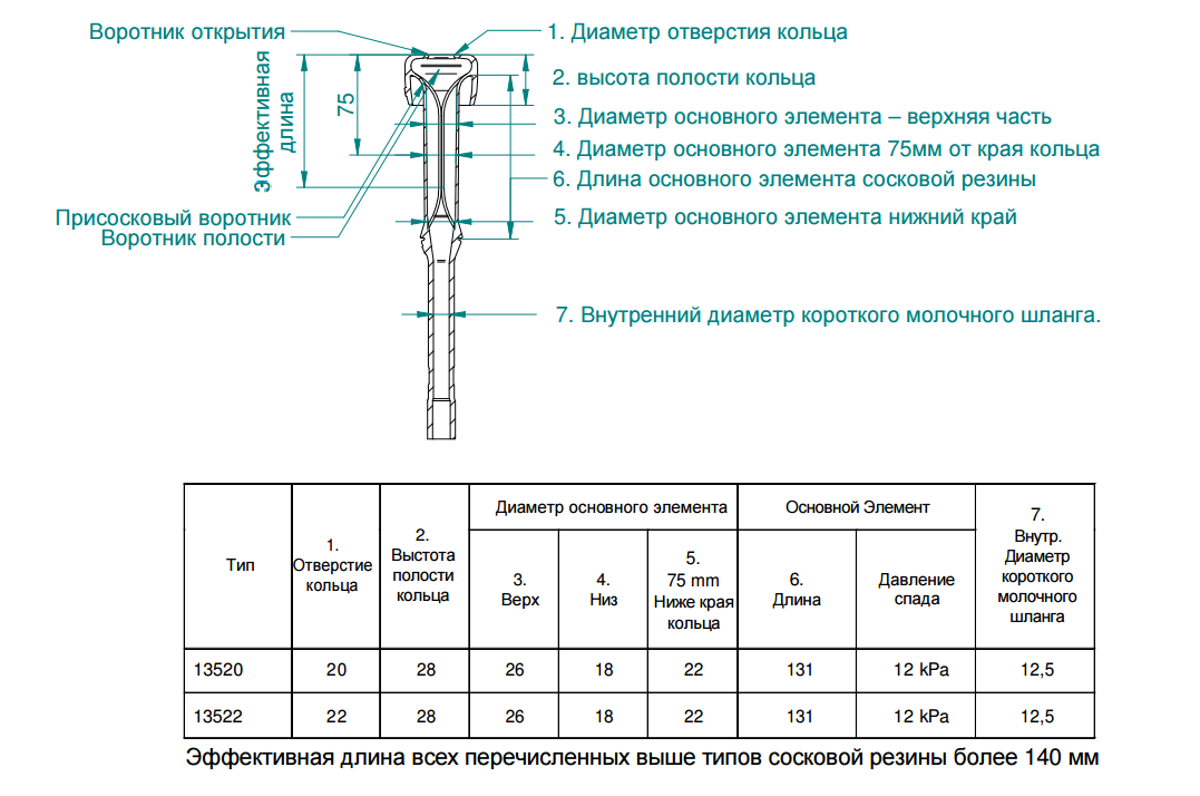 Soskovaya_rezina_SAC_13522__13520