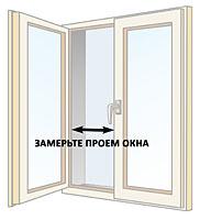 zak_01.jpg