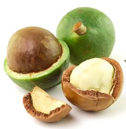 Масло макадамии (Macadamia ternifolia)