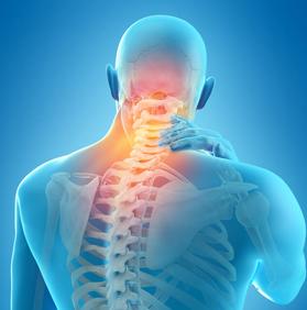 Известно, что боль- это проявление мышечных спазмов.    Попеременный режим  напряжения и расслабления мышц, включаемых вестибулярным аппаратом снимжается нагрузку на позвоночник и суставы.   Исключается затекания спины и шеи. Поддерживается необходимый уровень активности мышц позвоночника.