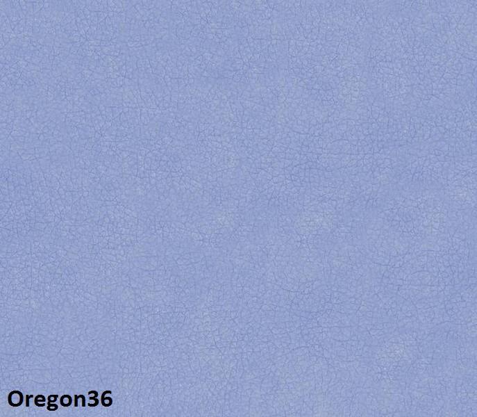 Oregon36-800x600.jpg