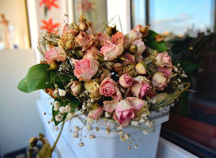 Увядшие в магазине цветы выбрасываются в мусорный бак