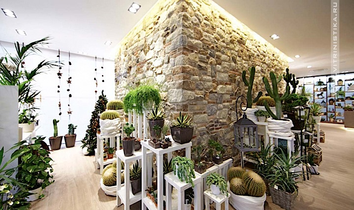 Ассортимент флористического бутика должен включать эксклюзивные виды растений