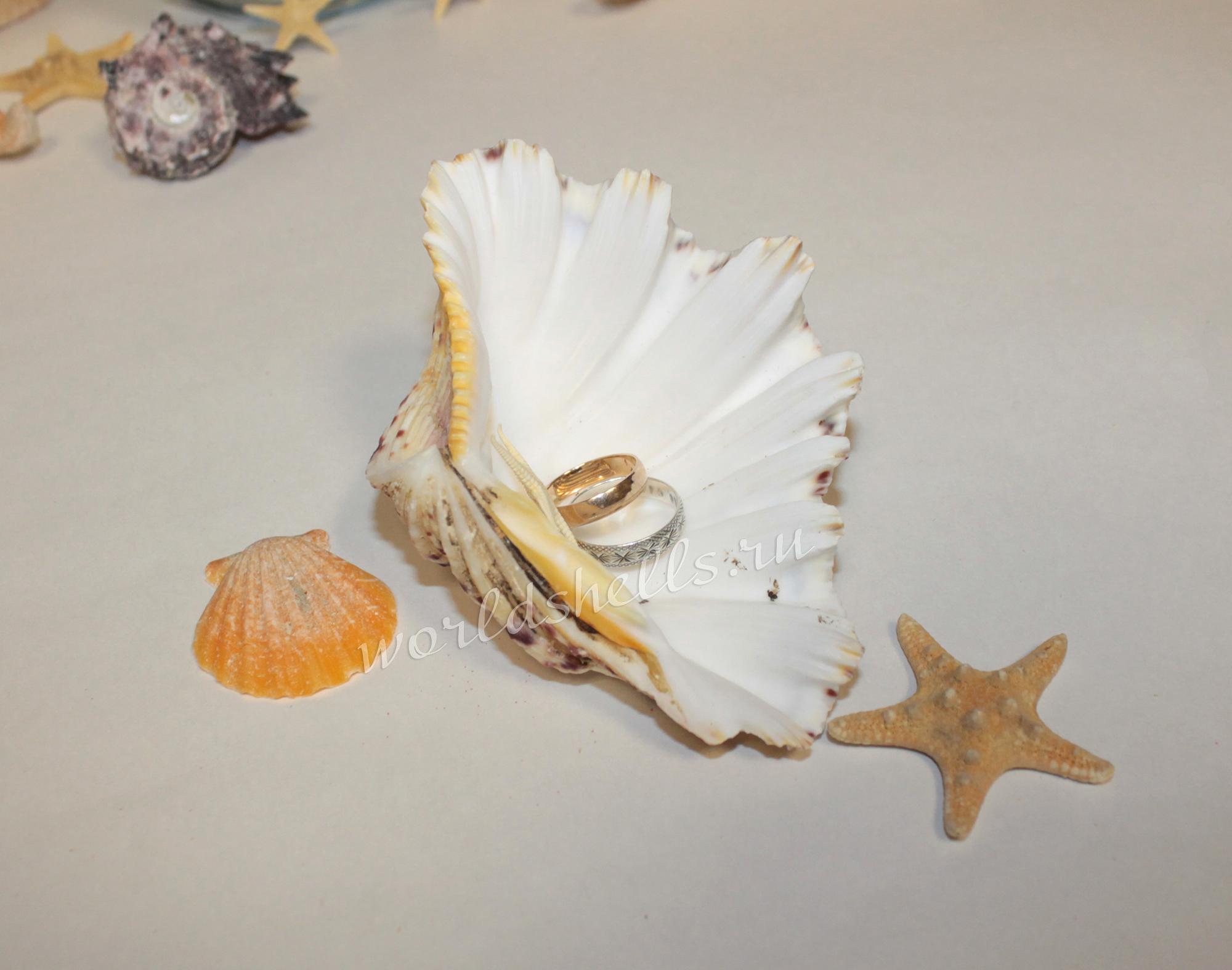 Подушечка для обручальных колец в морском стиле