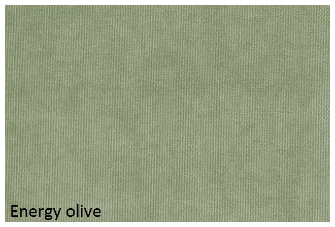 energy_olive.jpg