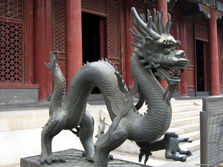 дракон из Китая