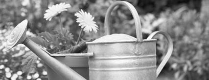 Автоматический полив сада и огорода