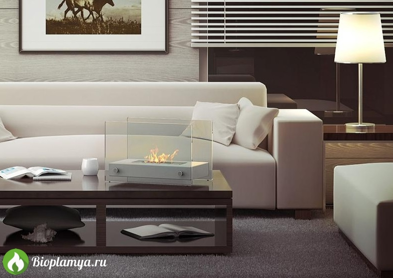 Напольный-биокамин-для-квартиры-улицы-Kratki-HOTEL-Bioplamya-1.jpg