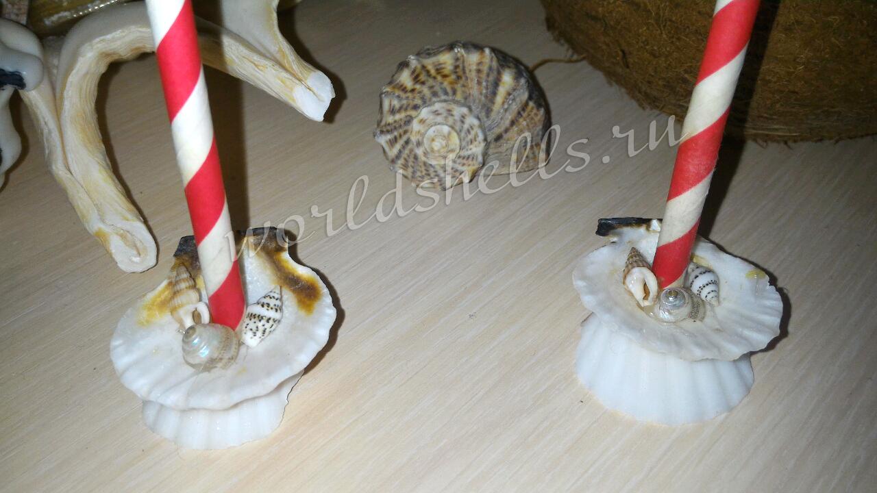 Подставки из морских ракушек - поделка