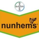 логотип Nunhems