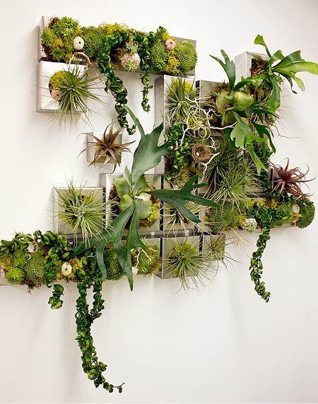 оформление стены картинами из растений и цветов