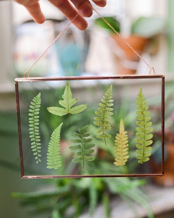 рамка из стекла на стену с растениями