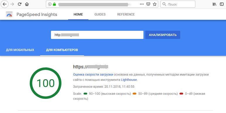 Применение сервиса PageSpeed Insights в работе