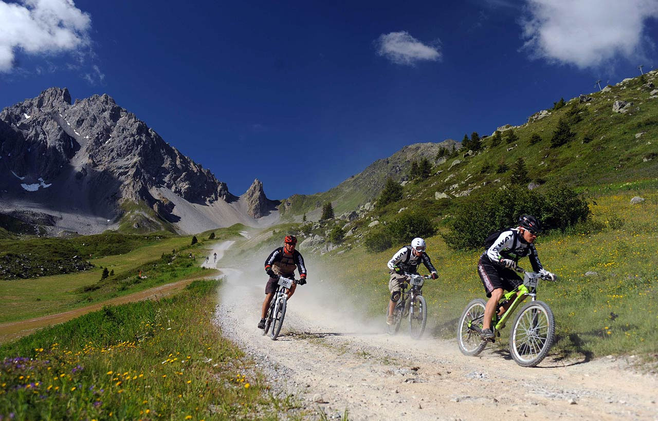 Разнообразие горных велосипедов