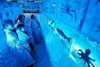 ледяной_аквариум_япония_м.jpg