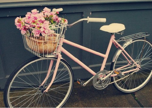 как-выбрать-велосипед-для-женщины-фото