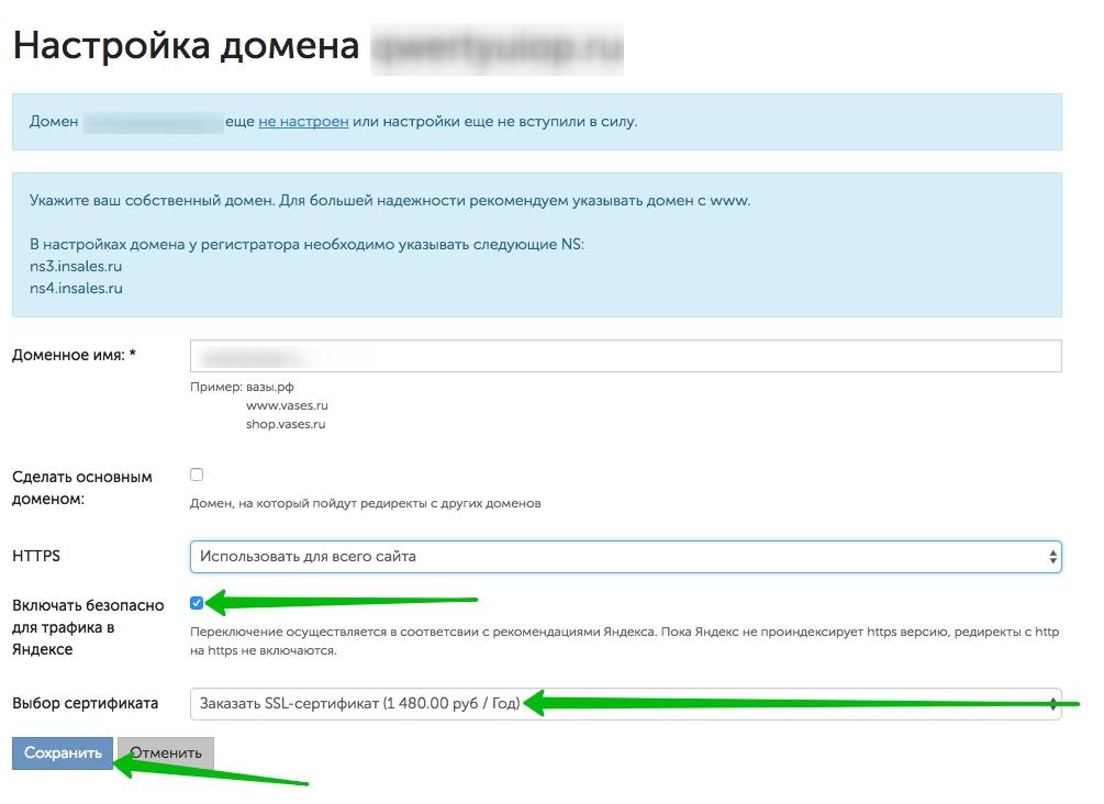 https://static-ru.insales.ru/files/1/395/4178315/original/настройка_домена_1.jpg