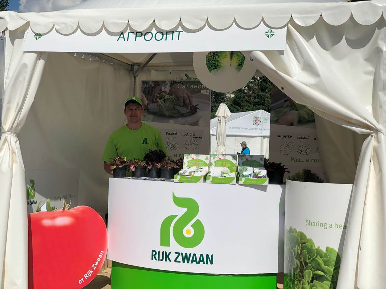 "Компания ООО ""Агроопт"" семена салата Rijk Zwaan / Райк Цваан"