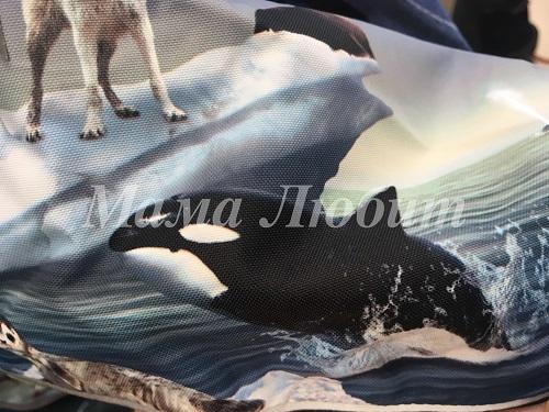 Molo комбинезон Pyxis Arctic Landscape с примеркой в интернет-магазине Мама Любит!