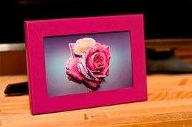 Готовая работа папертоль Радужная роза - оформление в рамку.