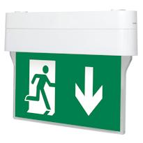 Nashi-S-LED Эвакуационные указатели для школ и детских садов