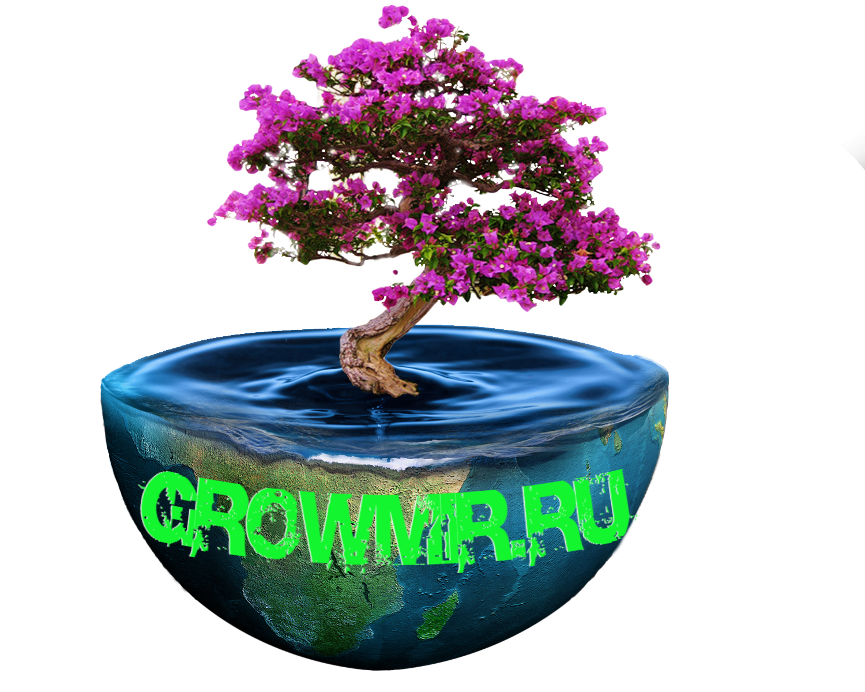 2017_Логотип_Земля__GROWMIR.RU.jpg