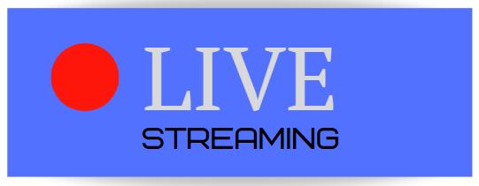 Online streaming CAICO DVR