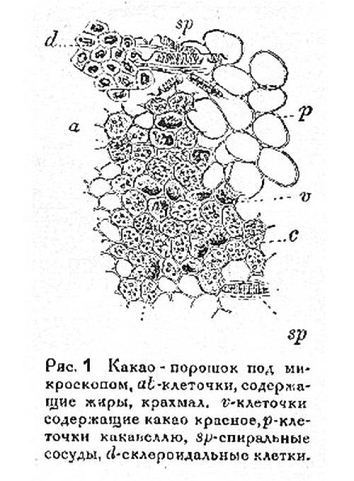 Какаопорошок_под_микроскопом.jpg