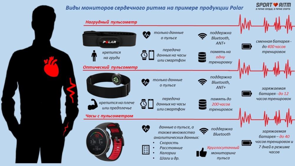 Инфографика: виды мониторов сердечного ритма