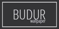 Обои Budur Wallpaper field