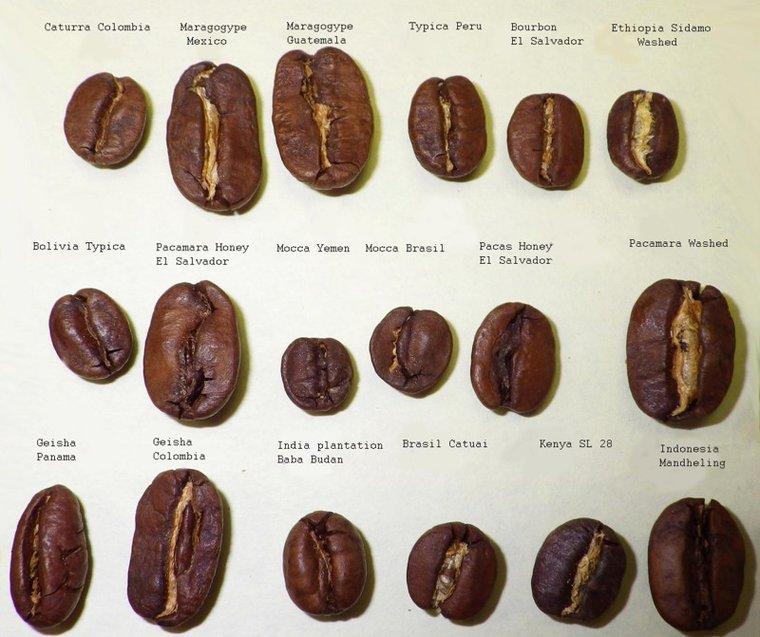 Сорта кофе в жаренном виде