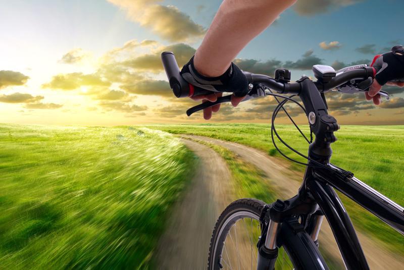 Руль велосипеда и дорога в поле
