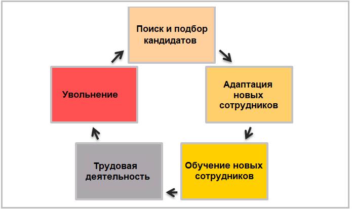 Цикл движения персонала