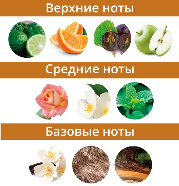 ноты_парфюм_глаз_тигра