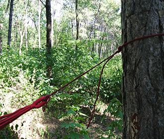 крепление гамака на деревьях 3