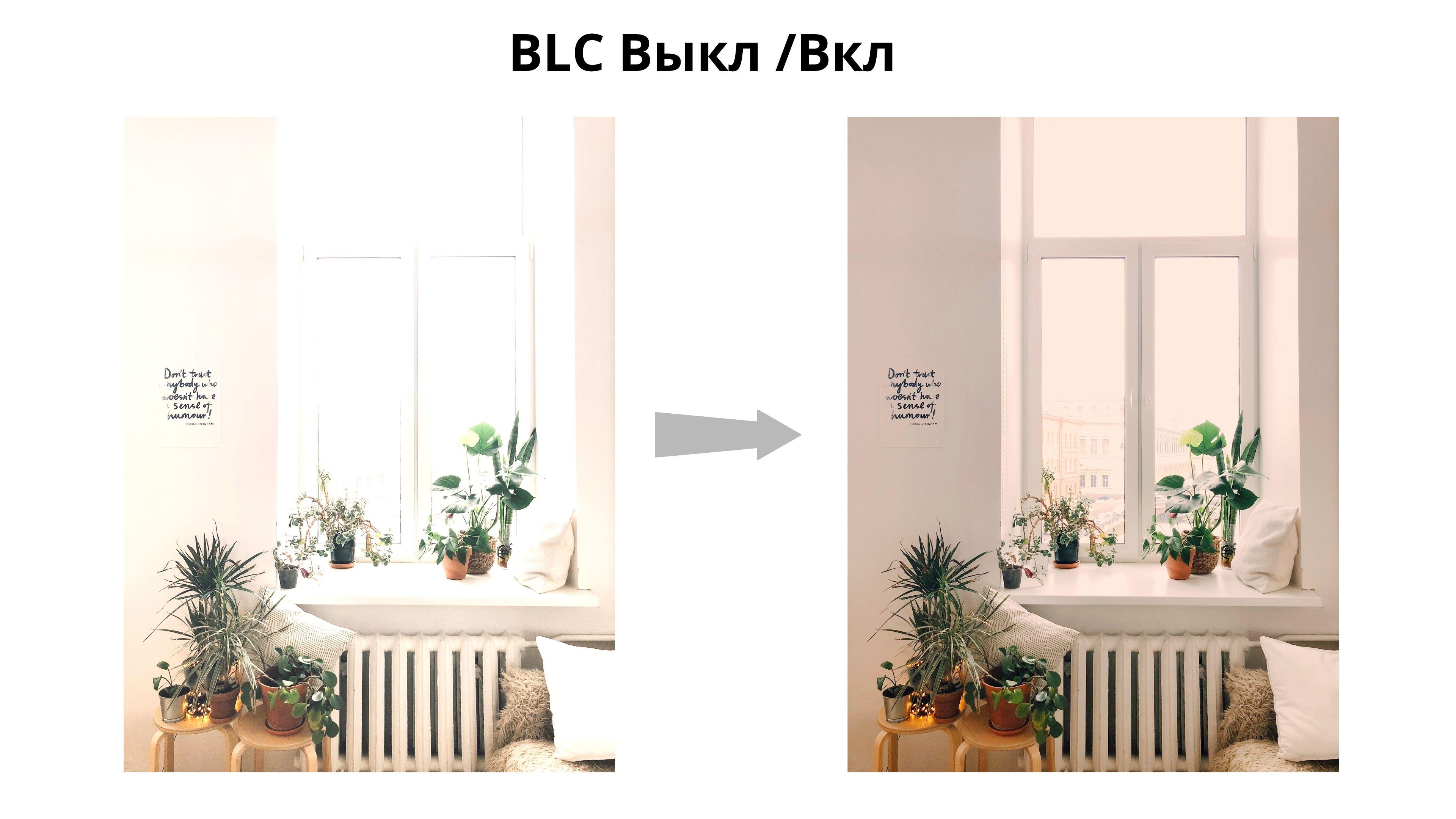 Видеокамера CAICO 5036GG для помещения режим BLC