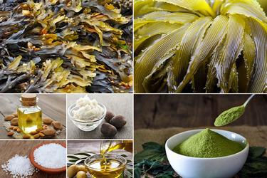 Состав крема для тела зелёный чай