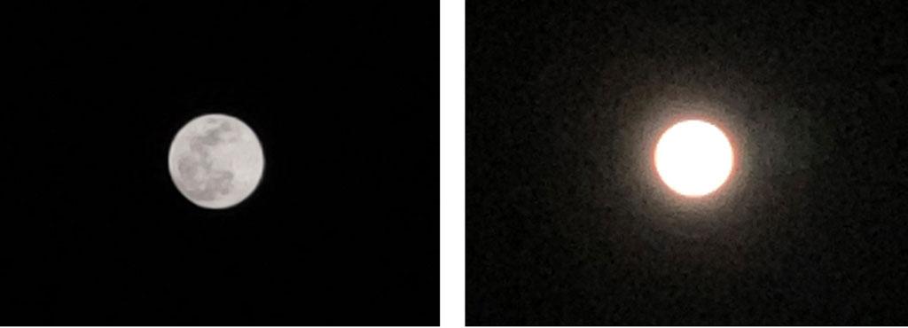 Смартфон Xiaomi Mi 9 камера ночь