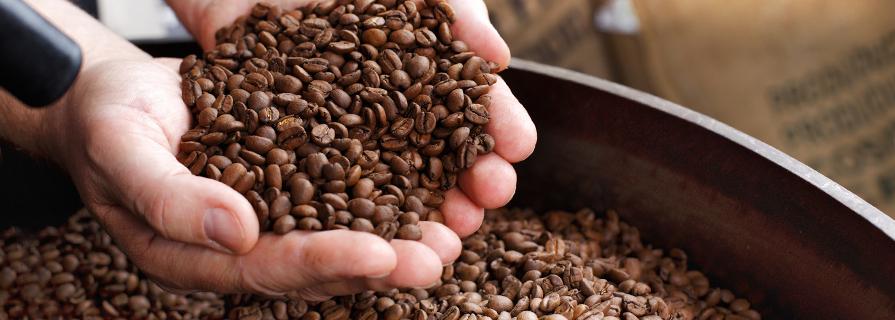 Свежеобжаренный кофе купить СПб