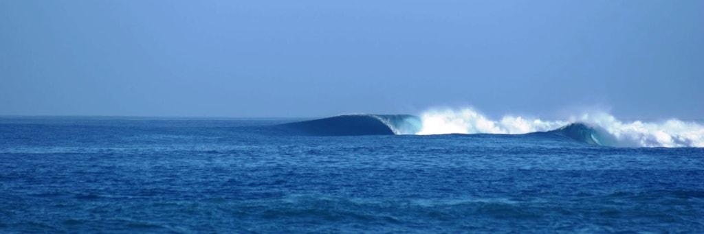 Волна на рифовом серф-споте