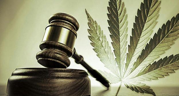 Наказание за семена конопли польза на организм марихуаны