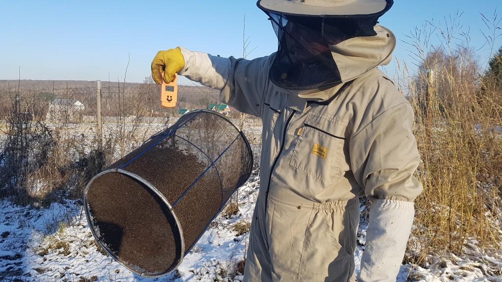 Масса пчел - 1,5 кг