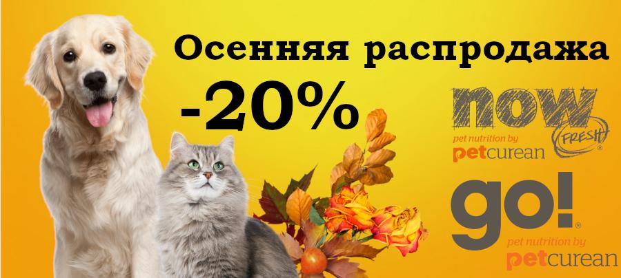 20% на Go и Now!