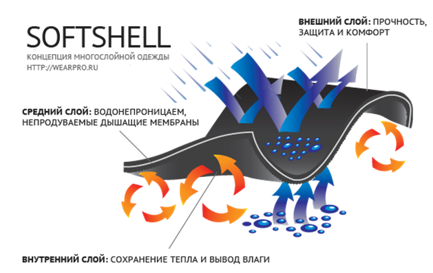 softshell.PNG