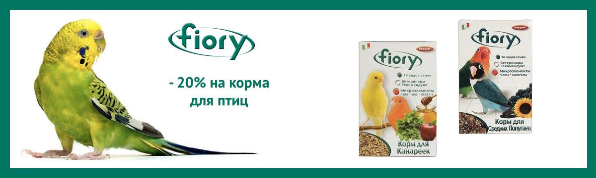 fiory_20off_1200x360.jpg